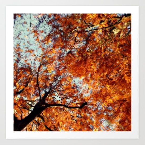 Autumn Riot II Art Print