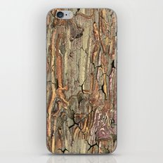 Peeling Worm Wood iPhone & iPod Skin