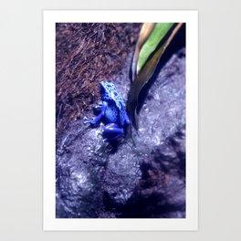 Mr Blue Frog Art Print