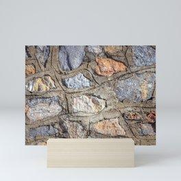 Cobblestones Cladding Wall Mini Art Print
