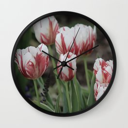 Spring Time Tulips Fine Art Photography Wall Clock