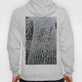 Longwood Gardens Autumn Series 416 Hoody