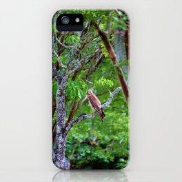 Hawk Watching iPhone Case