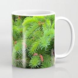 Evergreen's New Growth Coffee Mug