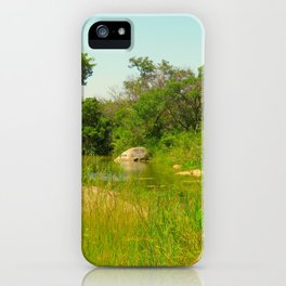 """A Walk on the Wild Side (vii)"" by ICA PAVON iPhone Case"