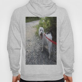 Puppy Going for a Hike Hoody