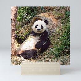 Panda 0315P Mini Art Print