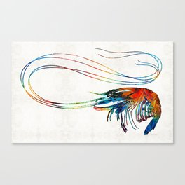 Colorful Shrimp Art by Sharon Cummings Canvas Print