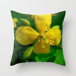 Greater Celandine Throw Pillow