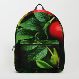 Rosehip Berries on a bush with green leaves and blossom Backpack