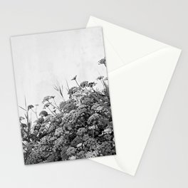 Magic Hour in Massa Lubrense: Black & White Stationery Cards
