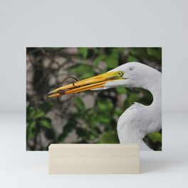 Anole for Lunch Mini Art Print