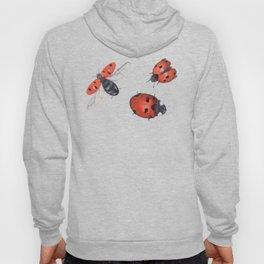 Prepare for takeoff ladybirds Hoody