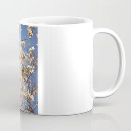 Dogwood Tree - Spring Flowering Tree Photography Coffee Mug
