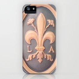 Versallies, France, French wood door iPhone Case