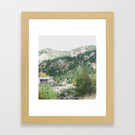 On the Fly Framed Art Print