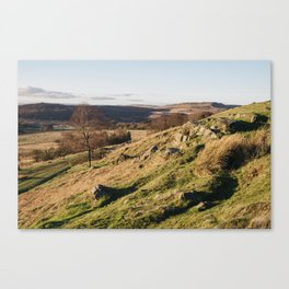Trees on a hillside at sunset. Upper Padley, Derbyshire, UK. Canvas Print