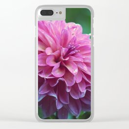 Longwood Gardens Autumn Series 392 Clear iPhone Case