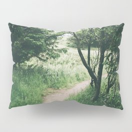 Happy Trails IX Pillow Sham