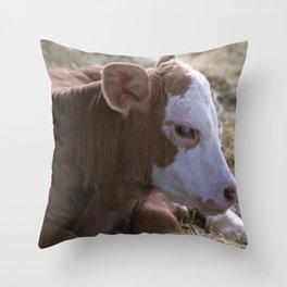 Calf in adorable contemplation Throw Pillow