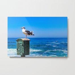 Seagull Lifeguard Metal Print
