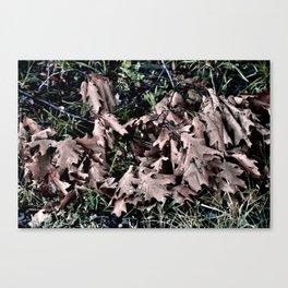 Oak Leaves Camo Canvas Print