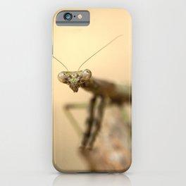 A Mayan Praying Mantis iPhone Case