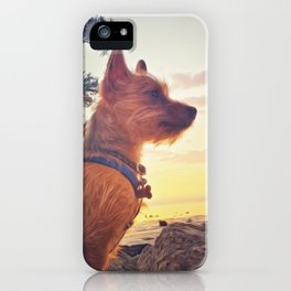 Pup at Sunset iPhone Case