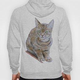 Sensitive Cat Hoody
