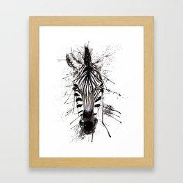 Zebraish Framed Art Print