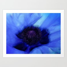 Poppy Blue Art Print