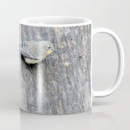 TEXTURES -- Warbler on Palm Bark Coffee Mug