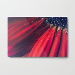 Flower series-Red-13 Metal Print