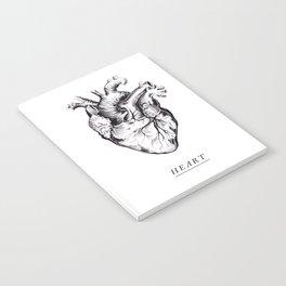 // HEART // Notebook