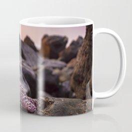 Red Starfish on Rocks Coffee Mug