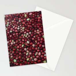 cranberry party2 Stationery Cards