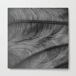 Leafscapes III Metal Print