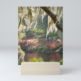 Southern Wonderland 1 Mini Art Print