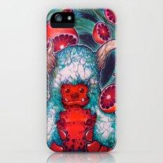 Delikat Slim Case iPhone (5, 5s)