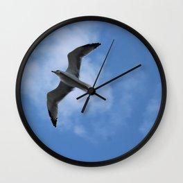 Shadow of a bird Wall Clock