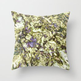 Eroded reflections Throw Pillow