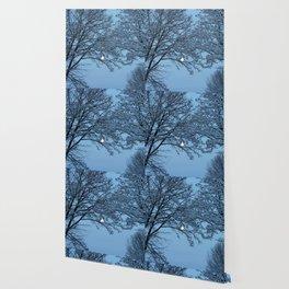 Morning Winter Moon Wallpaper