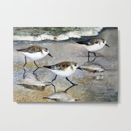 Sand Pipers Metal Print