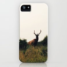 Prairie Creek Elk iPhone (5, 5s) Slim Case