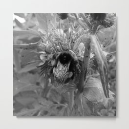 Bee Friends #2 (Black and White) Metal Print