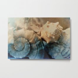 Painted Shells Metal Print