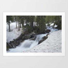 Paradise Creek Art Print