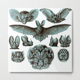 Ernst Haeckel Bats Moonlight Metal Print