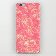 1598 iPhone & iPod Skin