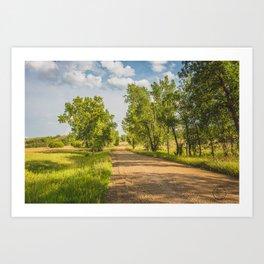 Summer Country Road, Fort Clark, North Dakota 1 Art Print